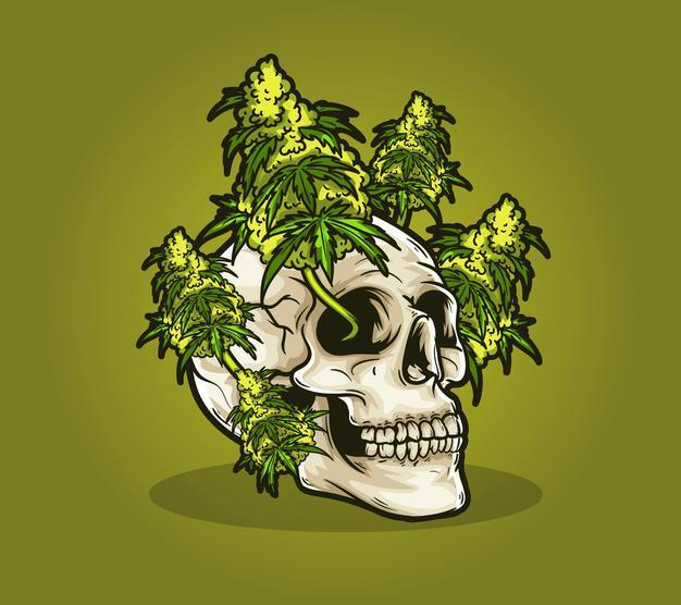 Crane mort weed cannabis marijuana 6749 112